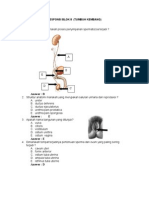 Blok 8 Lengkap (Anatomi, Biokimia, Histo)