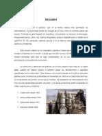 petroleo-pfm.docx