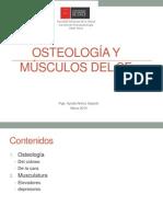 3. Osteologia y Musculos Del Se