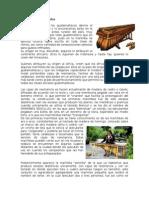 Historia de La Marimba y Tecun Human