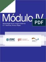 M+¦dulo IV Aprendizaje de la Lengua Materna