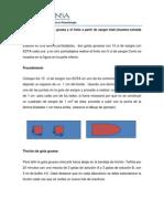 Elaboración y Tinción Gota Gruesa y Frotis, Conteo Parasitario (1)