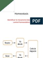 Homeostasis RENAL
