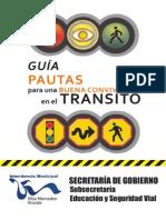 Normas de Transito Vial