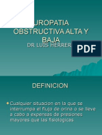 Uropatia Obstructiva Alta y Baja