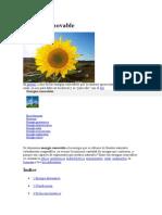 Energía renovable.docx