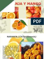 Naranja y Mango - Francy Ceballos