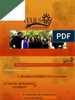 Cuenta  Pública Mesa Ejecutiva FEULS 2013