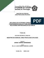 Tesis Influencia de Patrones Conductuales Transgeneracionales Familiares, En Las Relaciones Disfuncionales de Pareja
