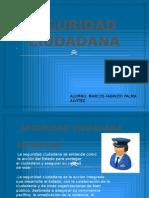 SEGURIDAD CIUDADANA -LISTO- MARCOS PALMA.pptx