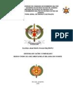 Sistema de Saude da Gra-Bretanha e Irlanda do Norte.doc