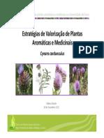 Valorizacao de PAM FDuarte.pdf