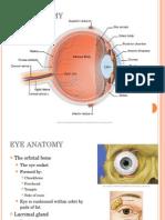 3800Lecture 1- Eye Anatomy