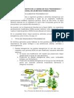 Estudio Comparativo de La Harina de Soja Transgenica y Convencional en Un Método Farmacológico