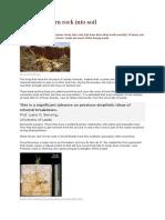 Root Fungi Turn Rock Into Soil