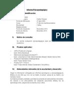 Modelo informe psp tradicional