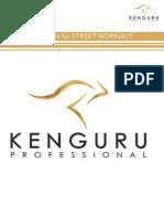 Kenguru Catalog 2014