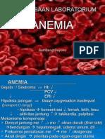 Anemia Satu