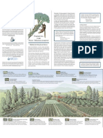 Conservation Biocontrol Farmers Brochure