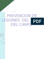 Capacitacion Tunel Del Carpo