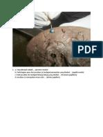 soal ren-vu.pdf