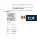 Chlorococcum Doc