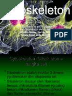 Biosel - Sitoskeleton