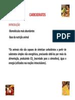 carboidratos.pdf