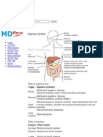 Digestive System - MCAT Review