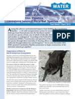 The Constitution Pipeline Threatens Several Rare Bat Species April 2015