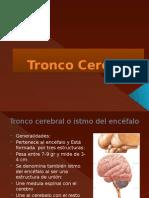 Tronco Cerebral
