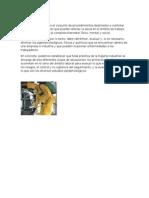 Higiene Industrial y Seguridad Industrial Maylin