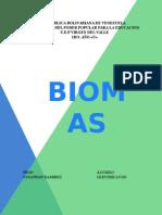Biomas (Gleyder Lugo)