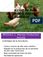 Producción de Aves de Corral y Manejo Sanitario - Completo(1)