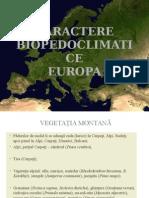 vegetatia_montana.ppt