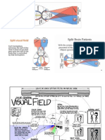 visual fields