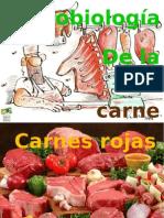 CARNEEEES
