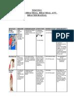 Testing Biceps brachial+Brachial Ant+.Brachioradial (HSR)