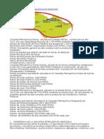 2 Complejos Petroquímicos en Desarrollo