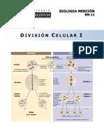 BM-11-13 Division Celular I.pdf