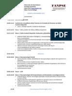 Programa Vi Congreso Fanpse 291013