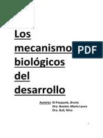 Mecanismos Biológicos del Desarrolo
