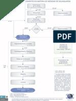 flujograma_medidas_salvaguarda.pdf