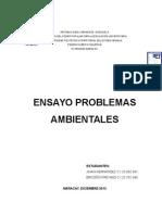 Ensayo PROBLEMAS AMBIENTALES