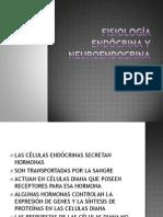 10.-Fisiologia Endocrina y Neuroendocrina