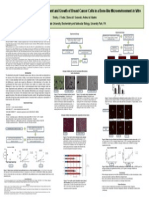 shelby aacr poster final
