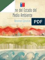 Informe Medio Ambiente Chile 2011