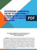Salud Ocupacional -Juan Veliz Flores - Magister