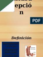 instususpeccion.ppt