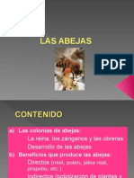 Clase3-colonias.ppt